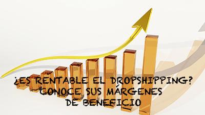 ¿Cual es el porcentaje de beneficios en dropshipping?